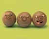 kewi faces